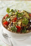 Mediterranean quinoa salad with cumins, eggplant and red chili stock images