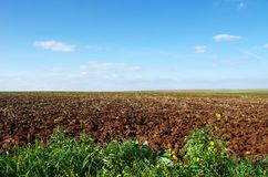 Mediterranean rural field. To cloudy horizon Royalty Free Stock Images