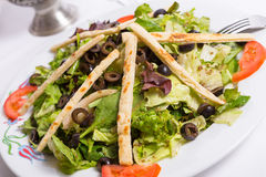 Mediterranean Salad Arranged With Pita Slices Stock Image