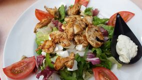 Mediterranean salad with chicken. Tomatoes, feta, chicken, salad, radicchio, seasoning. Italian product Stock Images