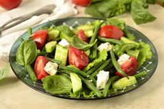 Mediterranean salad with feta Royalty Free Stock Images