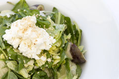 Mediterranean salad with mix of lettuce leaves and feta cheese Royalty Free Stock Photography