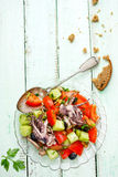 Mediterranean salad with octopus tomatoes cucumber Royalty Free Stock Photos