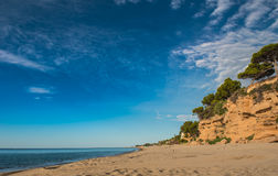 Mediterranean sandy beach, pine trees, Miami Platja, Catalunya,. Spain, background blue sky, space Royalty Free Stock Photos