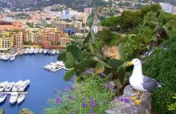 Mediterranean scenery,Monaco Royalty Free Stock Photography