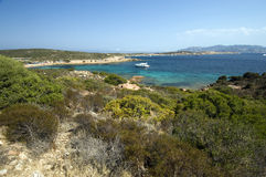 Mediterranean scrub and blue sea Stock Photo