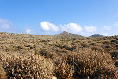 Mediterranean scrub on a mountain of Crete Stock Photo