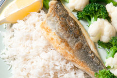 Mediterranean sea bass. Dredged in rice flour with white rice, broccoli, cauliflower and a lemon wedge. This heart healthy meal is also gluten free Royalty Free Stock Image