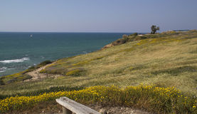 Mediterranean sea from the coastal meadow Stock Photos