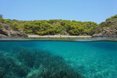 Mediterranean sea cove seagrass underwater Spain. Mediterranean sea peaceful cove with seagrass underwater, split view above and below water surface, Spain Stock Images