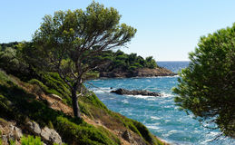 Mediterranean sea France, Royalty Free Stock Photos
