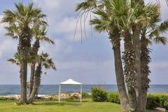 Mediterranean Sea palm beach with pavilion Stock Image