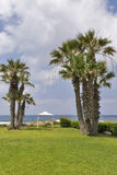 Mediterranean Sea palm beach with pavilion Royalty Free Stock Images