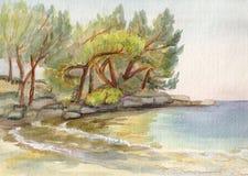 The sea near Antalia. Mediterranean sea, pines on coast, Turkey Royalty Free Stock Photography