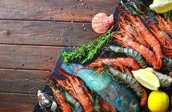Mediterranean sea restaurant cuisine. Royal and tiger shrimps, oysters, fish and ingredients for cooking. Royal and tiger shrimps, oysters, fish and ingredients royalty free stock photos