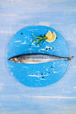 Mediterranean seafood concept in blue. Royalty Free Stock Photos