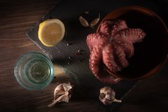 Mediterranean seafood. Whole fresh raw octopus with white wine, lemon and garlick, rustic background, flat lay. Mediterranean seafood. Whole fresh raw octopus Royalty Free Stock Photos