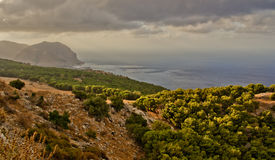 Mediterranean seaside cliffs. Forested seaside cliffs of the Mediterranean in Sicily Stock Photos
