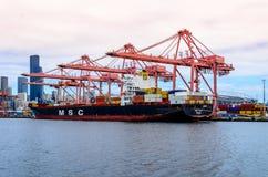Mediterranean Shipping Company Images libres de droits