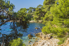 The mediterranean shore. Under the sun of Provence Royalty Free Stock Images