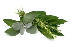 Mediterranean Spices Royalty Free Stock Photo