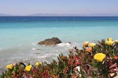 Mediterranean Spring Stock Photos