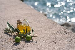 Mediterranean Still. Small bottle of olive-oil an an olive-branch with fruits on it in front of a mediterranean scene Royalty Free Stock Image