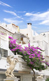Mediterranean street. With a Bougainvillea Royalty Free Stock Photo