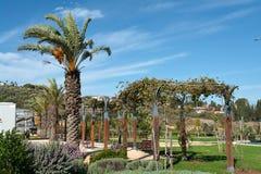 Mediterranean style city park Israel Royalty Free Stock Photos