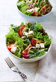 Mediterranean-Style Salad with Feta, Green Olives and Capers Royalty Free Stock Photography