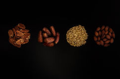 Mediterranean Style. A selection of walnuts, dates, sunflower seeds and almonds royalty free stock photography
