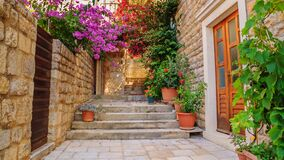 Free Mediterranean Summer Cityscape - View Of A Medieval Street With Stairs In The Old Town Of Hvar Royalty Free Stock Photos - 187254318