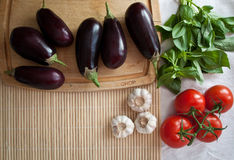 Mediterranean summer ingredients. Typical Mediterranean summer ingredients: aubergines, tomatoes, basil, garlic with plenty of copy space Stock Photography