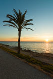 Mediterranean summer sunrise Stock Image
