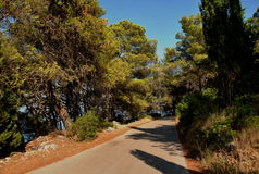 MEDITERRANEAN , TREES AND ROAD, HVAR ISLAND Stock Photo