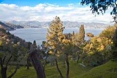 Mediterranean vegetation Stock Photo