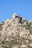 Mediterranean vegetation in Sierra de los Porrones Stock Images