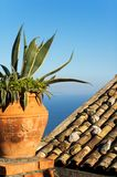 Mediterranean view royalty free stock photo