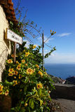 Mediterranean view. A flower-laden street corner above Taormina, Sicily, Italy Stock Photos