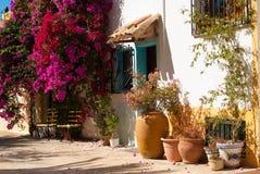 Mediterranean village. Flowers and sunshine, a Mediterranean village street Stock Photos