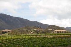 Mediterranean vineyard country villas Royalty Free Stock Photo