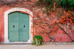 Mediterranean wall with wooden door. A mediterranean style red wall with painted wooden door and some climbing plants Stock Photography