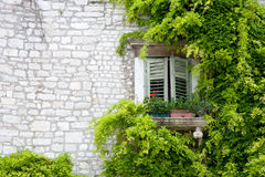 Mediterranean window with green leaves Royalty Free Stock Images