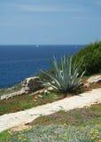 Mediterranean2 Stockbild