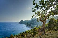 Mediterraneansea in Ibiza, Balearic islands. Royalty Free Stock Image