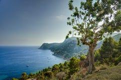 Mediterraneansea in Ibiza, Balearic islands. Royalty Free Stock Image