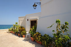 Mediterrean terrace. A typical white mediterrean terrace with many plants. South of Italy Royalty Free Stock Photography