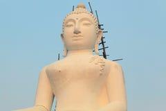 Meditierendes Buddhas Lizenzfreie Stockfotografie
