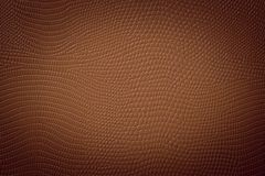 Medium Brown Neutral Snake Skin Texture Stock Photography