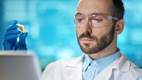 Medium close-up confident professional male scientist holding silicon microchip. Man researcher wearing protective clothes working using laptop at modern stock video